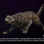 Far cry 4 - Sněžný levhart